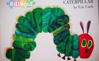 very hungry caterpillar oruga ingles